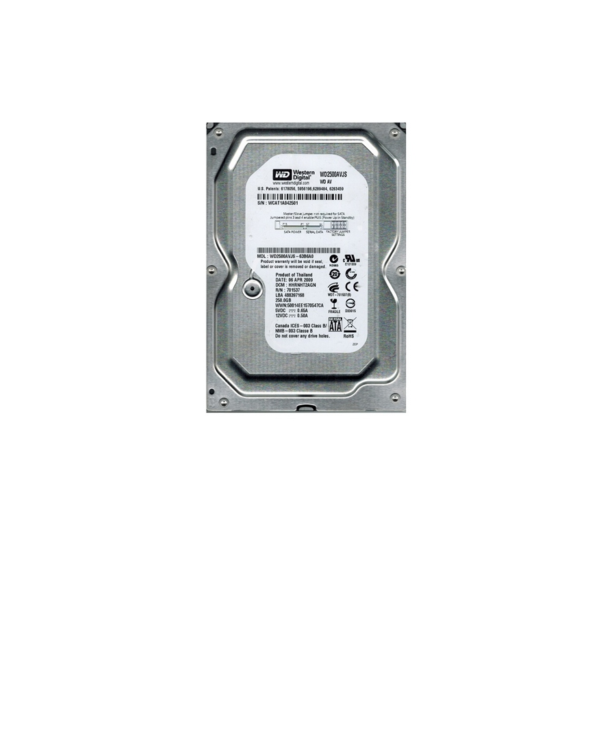 Hard Disk Western Digital 250Gb WD2500AVJS